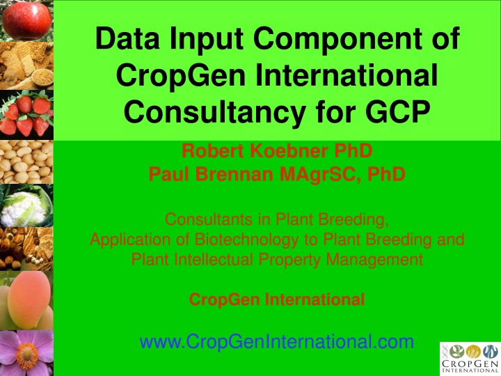 data input component of cropgen international consultancy for gcp n.