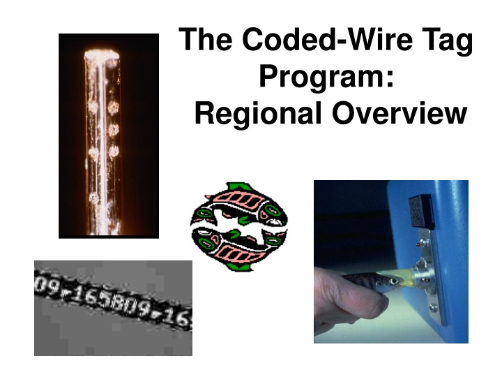 the coded wire tag program regional overview n.