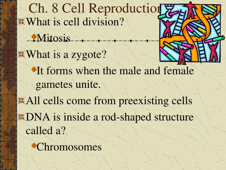 ch 8 cell reproduction n.