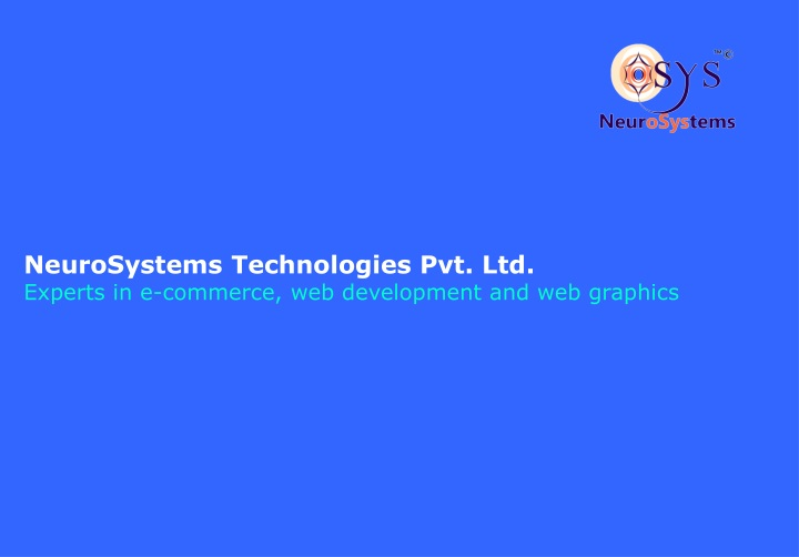 neurosystems technologies pvt ltd experts in e commerce web development and web graphics n.