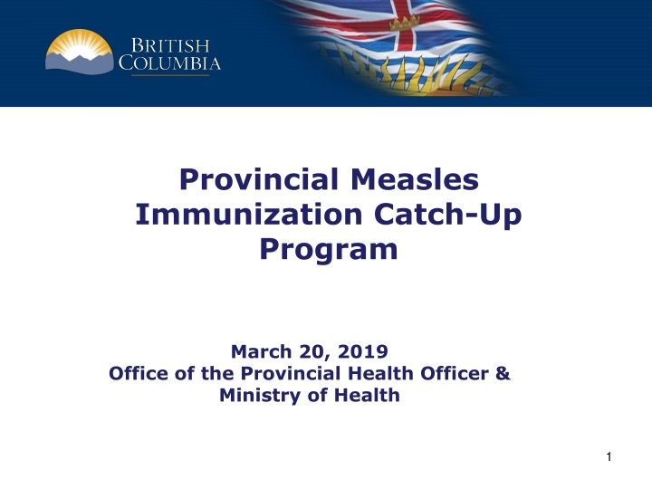 provincial measles immunization catch up program n.