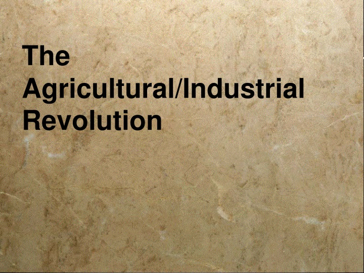 the agricultural industrial revolution n.
