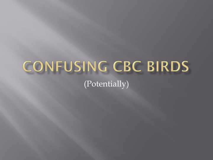 confusing cbc birds n.