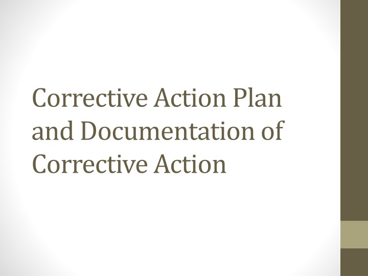 corrective action plan and documentation of corrective action n.