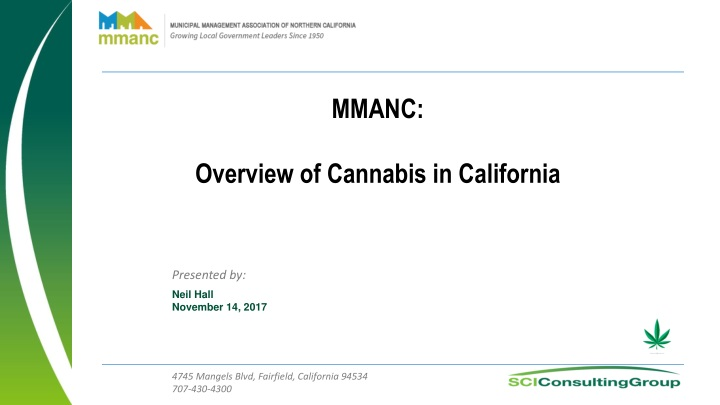 mmanc overview of cannabis in california n.