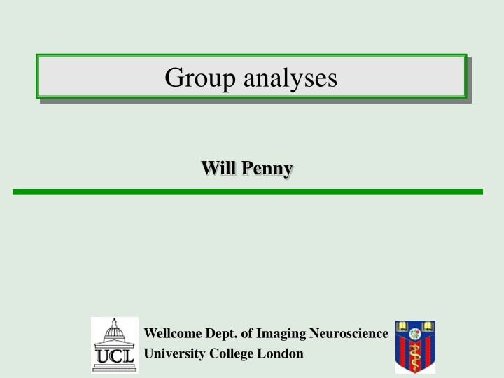 group analyses n.