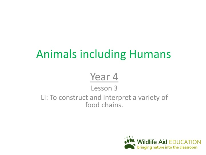 animals including humans n.