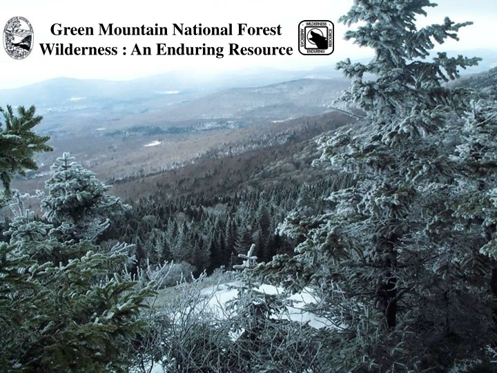 green mountain national forest wilderness n.
