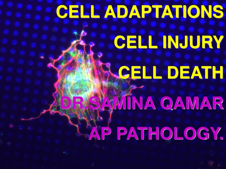 cell adaptations cell injury cell death dr samina n.