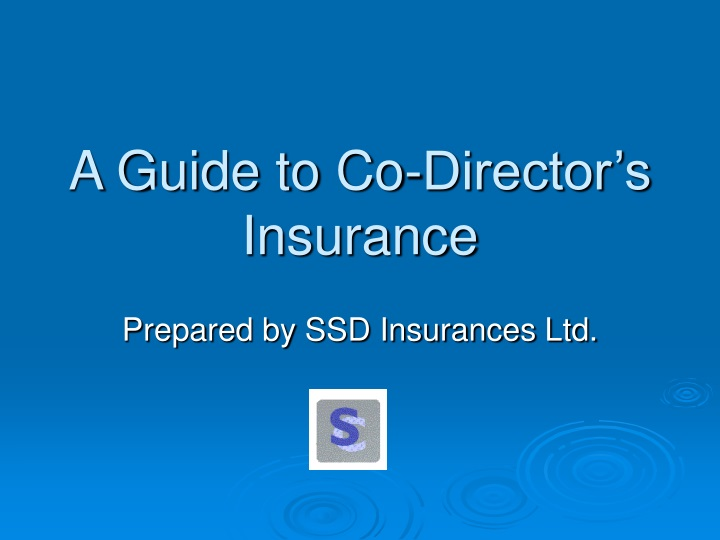 a guide to co director s insurance n.