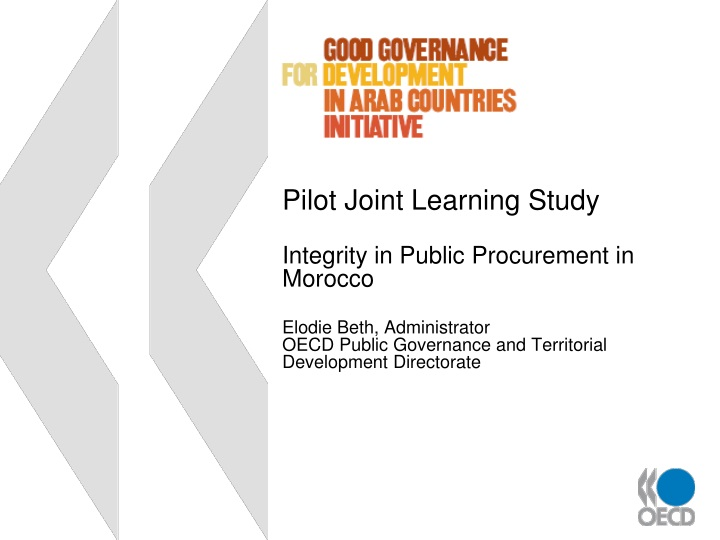 pilot joint learning study integrity in public n.
