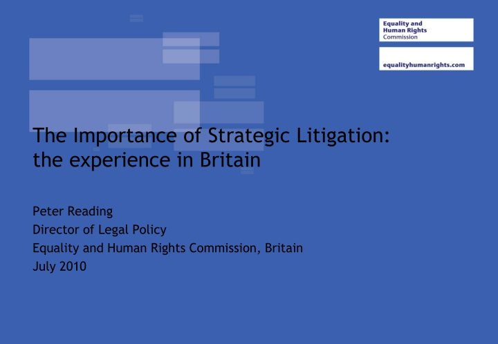 the importance of strategic litigation the experience in britain n.