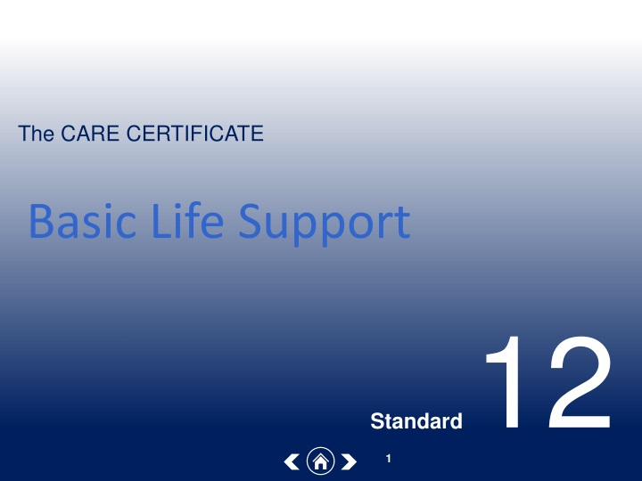 basic life support n.
