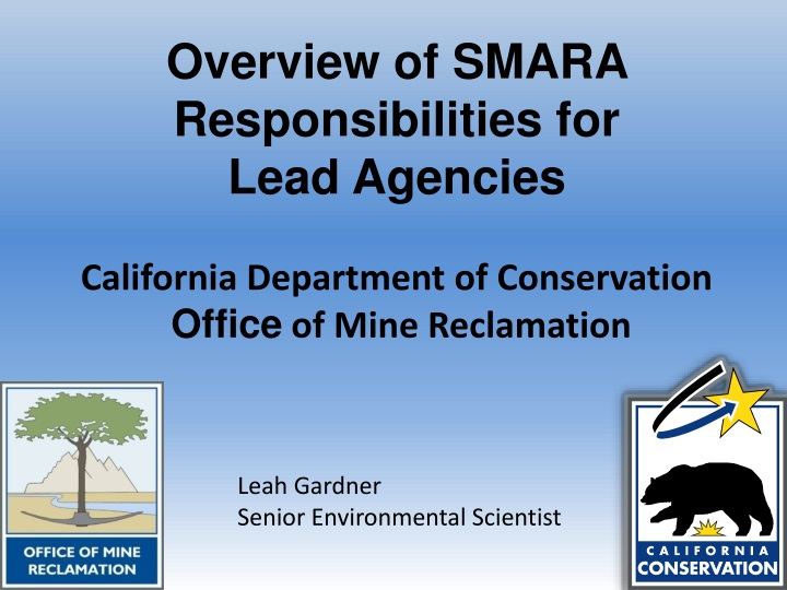 overview of smara responsibilities for lead agencies n.