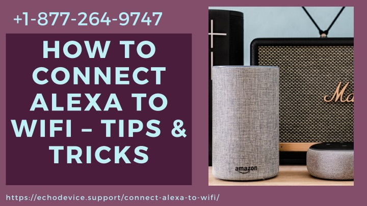 Online Experts to Fix Alexa Won't Connect to WiFi Error –Call +1 8772649747