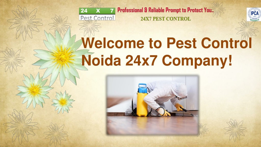 welcome to pest control noida 24x7 company l.