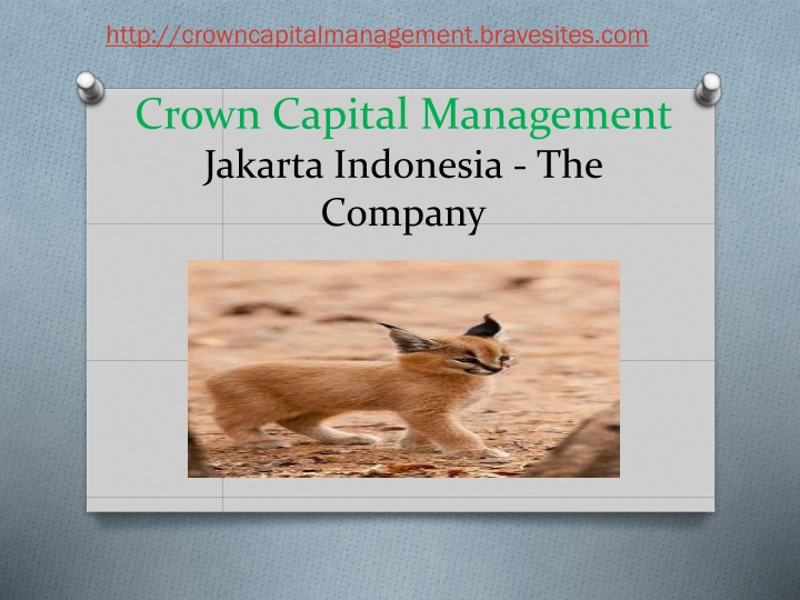 crown capital management jakarta indonesia the company n.