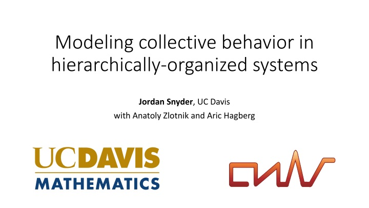 modeling collective behavior in hierarchically organized systems n.